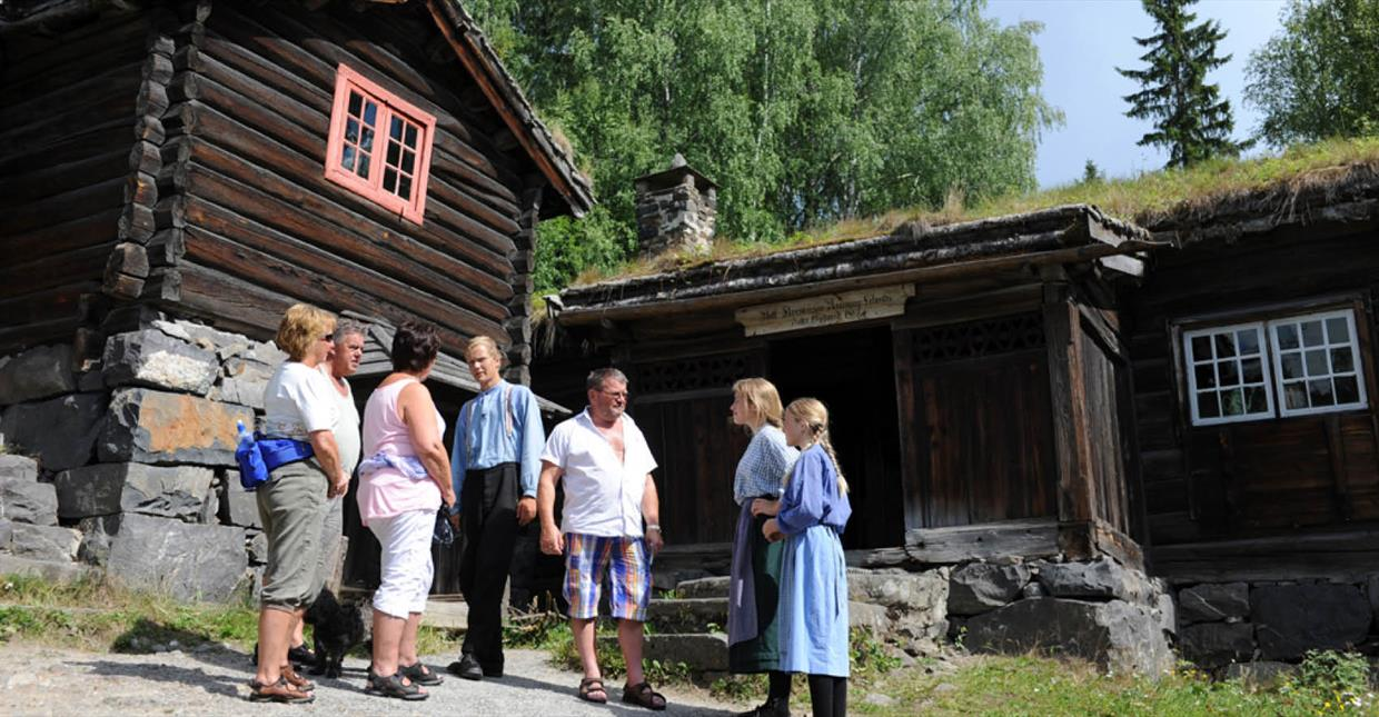 People on a guided tour at Maihauegn open air museum