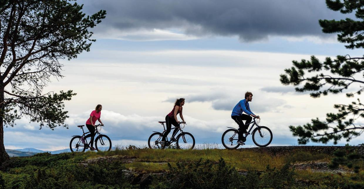 Cycling in Rondane