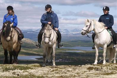 Horseback riding with view of Rondane