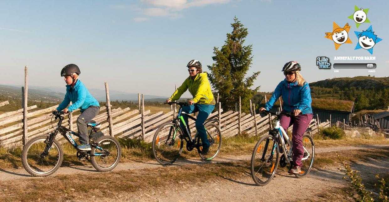 Family on bikes at Skeikampen
