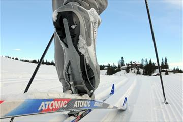 Professional ski instructor and guide