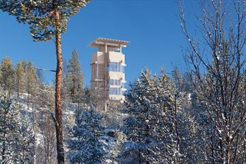 The moose observation tower