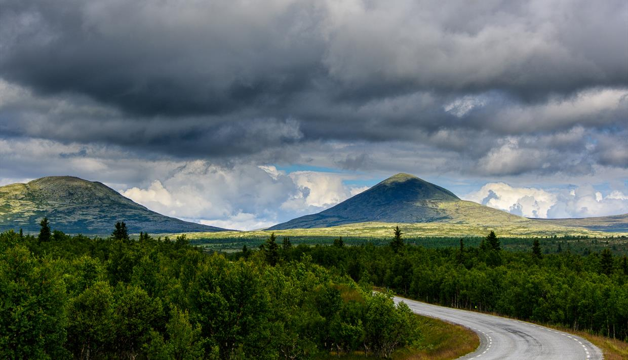 Norwegian Scenic Routes | Rondane